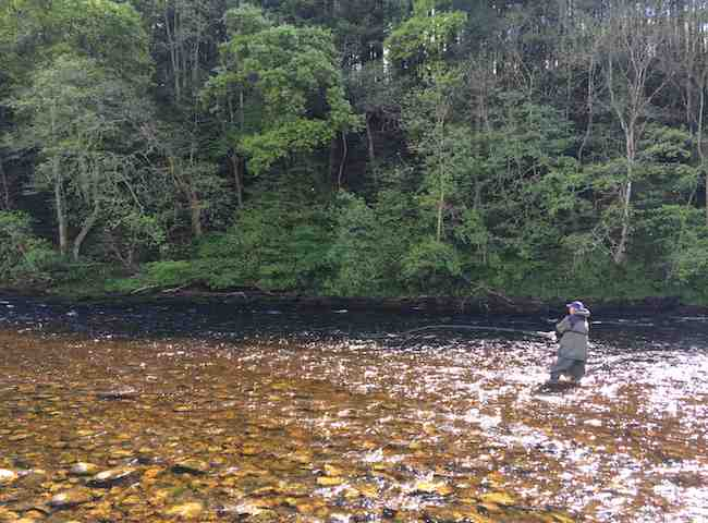 Some Of The Best Salmon Rivers In Europe Are Found In Scotland